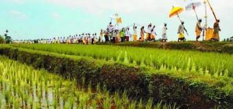 Thailand Tertarik Kerja Sama Pertanian dengan Bali