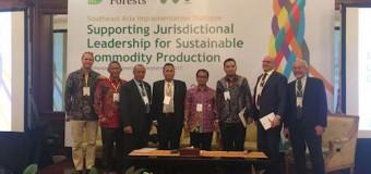 Replanting Sawit di Muba Pukau Peserta Dialog TFA 2020