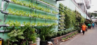 Kampung Glintung Go Green Malang Percontohan Reforma Agraria