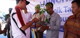 Sukses Replanting Kelapa Sawit, Muba Lanjutan Replanting Karet