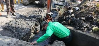 Harnojoyo Temukan Penyebab Banjir di Kawasan IBA