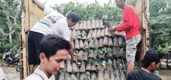 Kelompok Tani Senang Terima Bantuan Bibit Karet dari Disbun Muba