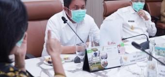 Gubernur HD Upayakan PSBB Palembang dan Prabumulih